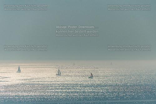 Segelboote im Gegenlicht