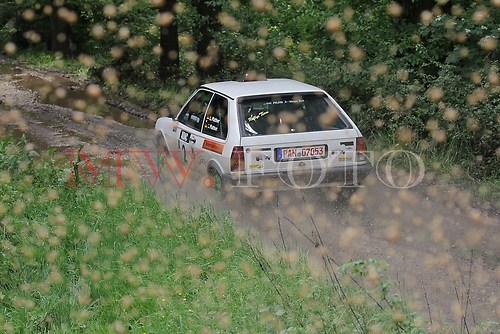 Rallye (8 von 332)
