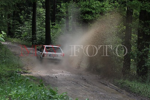 Rallye (10 von 332)