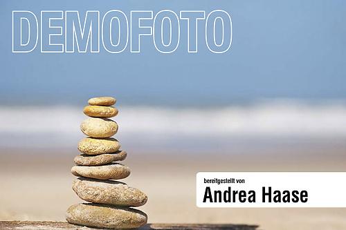 portfolio30