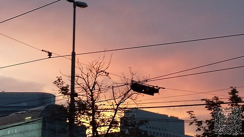 Sonnenuntergang über Wien