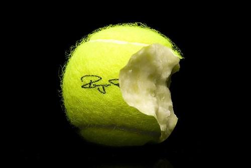 Tennisballapfel Kopie