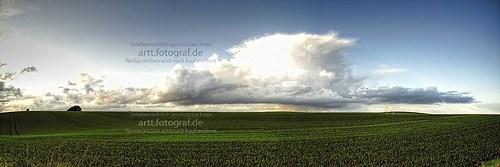 Wiese_Panorama_160x50