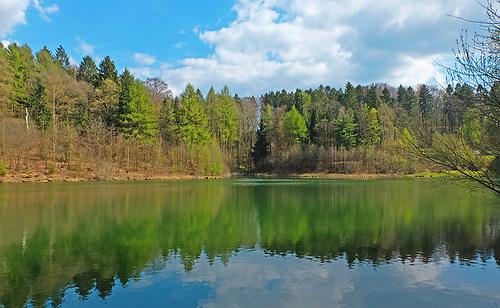 Märchenhafte Landschaft (Ronsdorfer Talsperre) von Linda Lerch