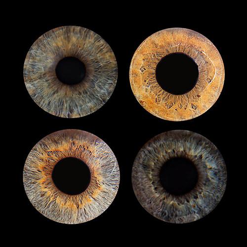 Auge-4er-quadratisch
