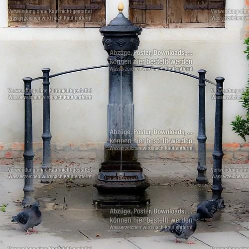 Fontana in Murano