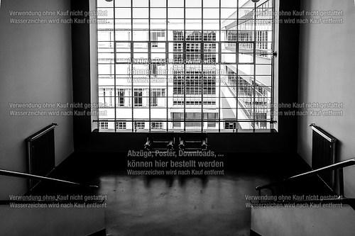 Bauhaus-3