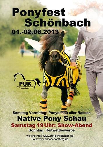 (c)SimoneHomberg_Plakat-Ponyfest-Schönbach-2013
