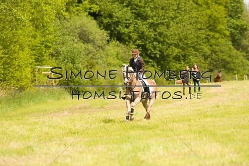(c)SimoneHomberg_Ponyfest_2013_So_0506