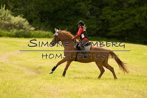 (c)SimoneHomberg_Ponyfest_2013_So_0520