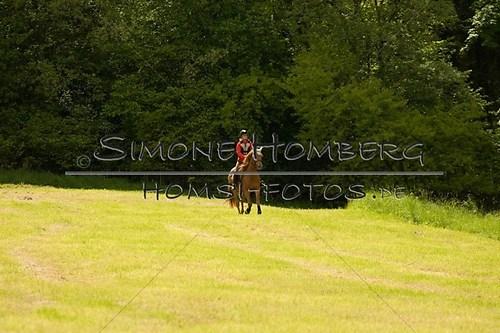 (c)SimoneHomberg_Ponyfest_2013_So_0521