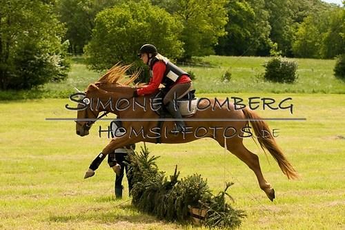 (c)SimoneHomberg_Ponyfest_2013_So_0527