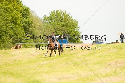 (c)SimoneHomberg_Ponyfest_2013_So_0528