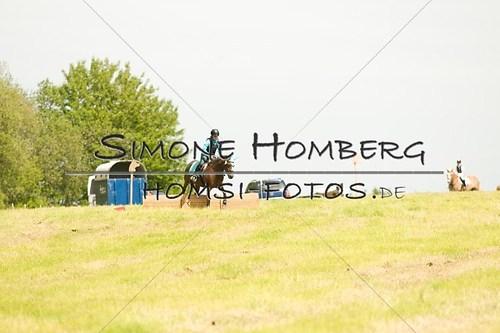(c)SimoneHomberg_Ponyfest_2013_So_0546