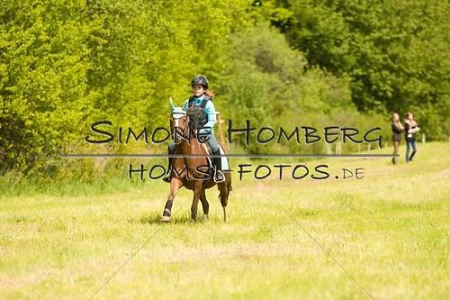 (c)SimoneHomberg_Ponyfest_2013_So_0548