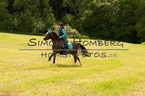 (c)SimoneHomberg_Ponyfest_2013_So_0560