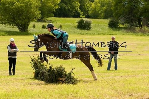 (c)SimoneHomberg_Ponyfest_2013_So_0561