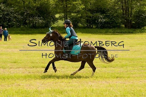 (c)SimoneHomberg_Ponyfest_2013_So_0562