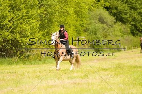 (c)SimoneHomberg_Ponyfest_2013_So_0563