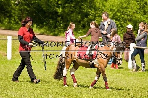 (c)SimoneHomberg_Ponyfest_2013_0047