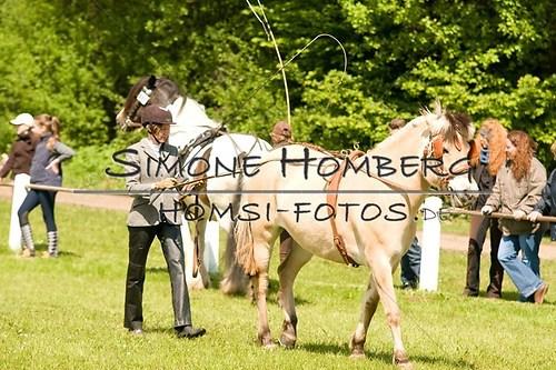 (c)SimoneHomberg_Ponyfest_2013_0048
