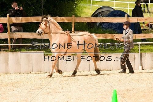 (c)SimoneHomberg_Ponyfest_2013_0051
