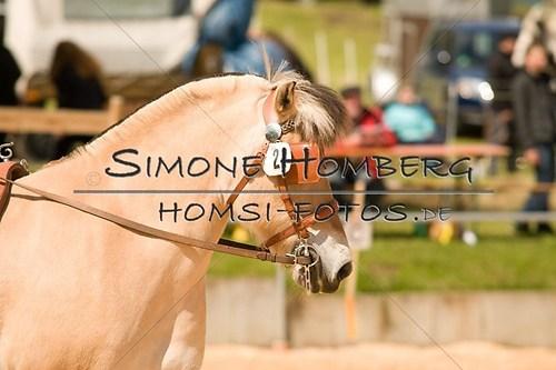 (c)SimoneHomberg_Ponyfest_2013_0052