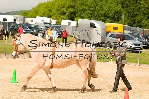 (c)SimoneHomberg_Ponyfest_2013_0053