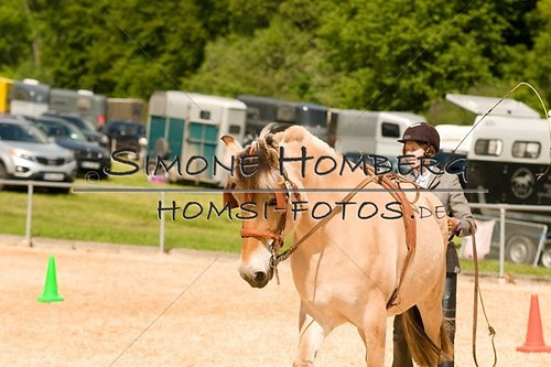 (c)SimoneHomberg_Ponyfest_2013_0054