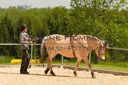 (c)SimoneHomberg_Ponyfest_2013_0057