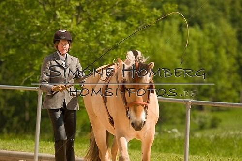 (c)SimoneHomberg_Ponyfest_2013_0058