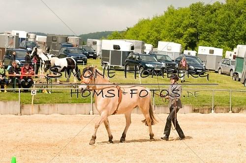 (c)SimoneHomberg_Ponyfest_2013_0060