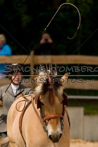 (c)SimoneHomberg_Ponyfest_2013_0062