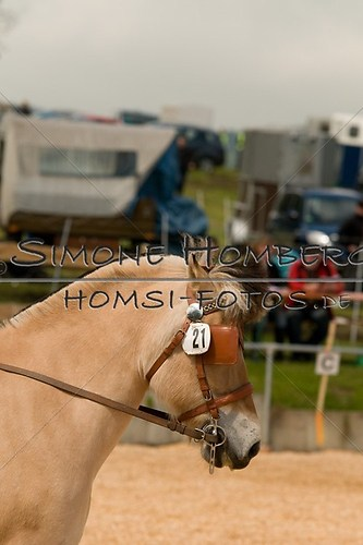 (c)SimoneHomberg_Ponyfest_2013_0063