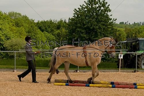 (c)SimoneHomberg_Ponyfest_2013_0064