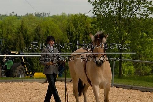 (c)SimoneHomberg_Ponyfest_2013_0066