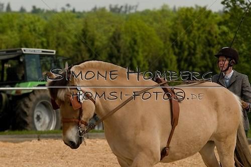 (c)SimoneHomberg_Ponyfest_2013_0067