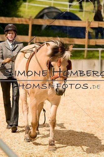 (c)SimoneHomberg_Ponyfest_2013_0068