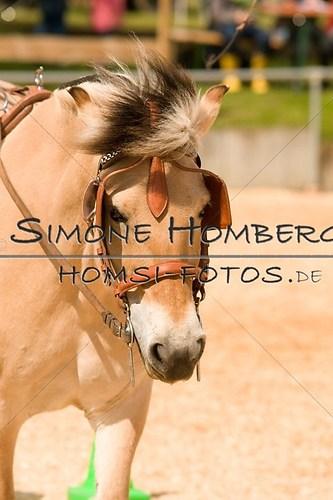 (c)SimoneHomberg_Ponyfest_2013_0069
