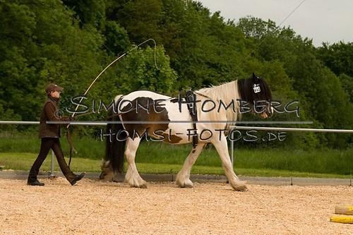 (c)SimoneHomberg_Ponyfest_2013_0080