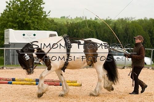(c)SimoneHomberg_Ponyfest_2013_0083