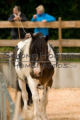 (c)SimoneHomberg_Ponyfest_2013_0084