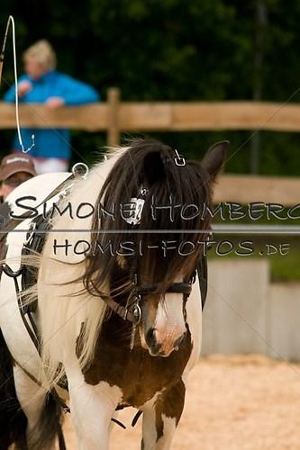 (c)SimoneHomberg_Ponyfest_2013_0085