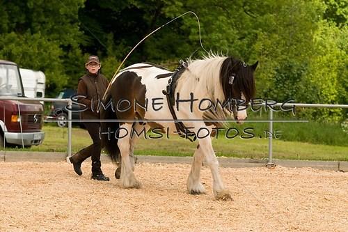 (c)SimoneHomberg_Ponyfest_2013_0086