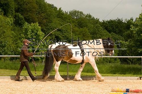 (c)SimoneHomberg_Ponyfest_2013_0087