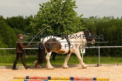 (c)SimoneHomberg_Ponyfest_2013_0088