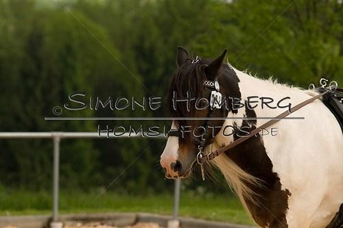 (c)SimoneHomberg_Ponyfest_2013_0093
