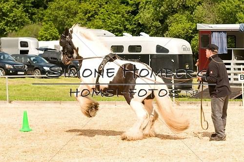 (c)SimoneHomberg_Ponyfest_2013_0094
