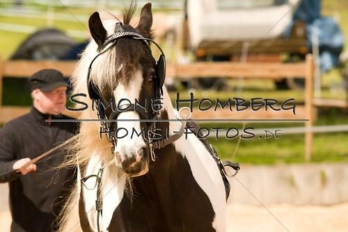 (c)SimoneHomberg_Ponyfest_2013_0098