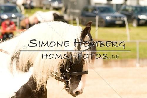(c)SimoneHomberg_Ponyfest_2013_0099